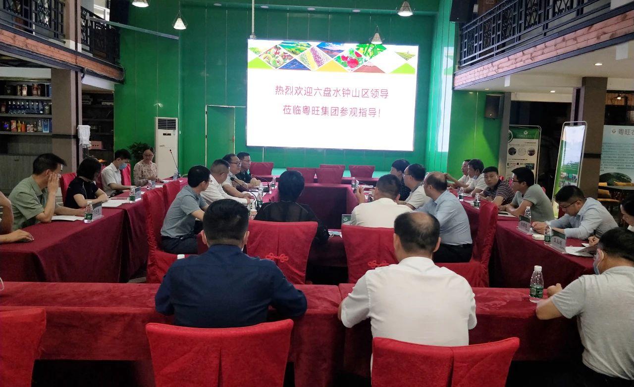 六盘水钟山区领导考察粤旺集团,双方将共建大型蔬菜种植基地