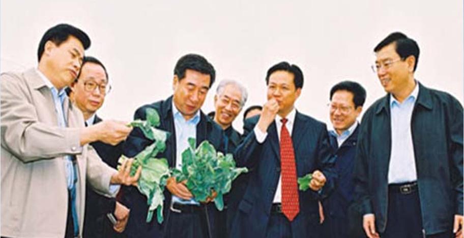 全国人大委员长张德江、副总理回良玉等考察绿田基地